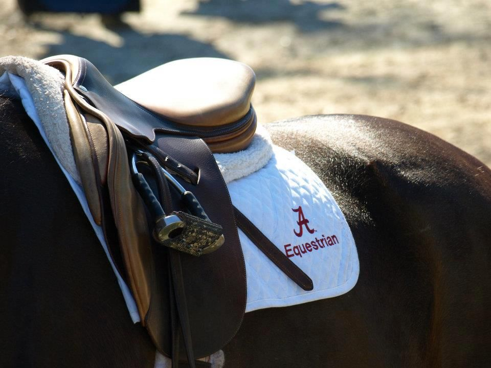 University Of Alabama Equestrian Team Photo From Fb Page
