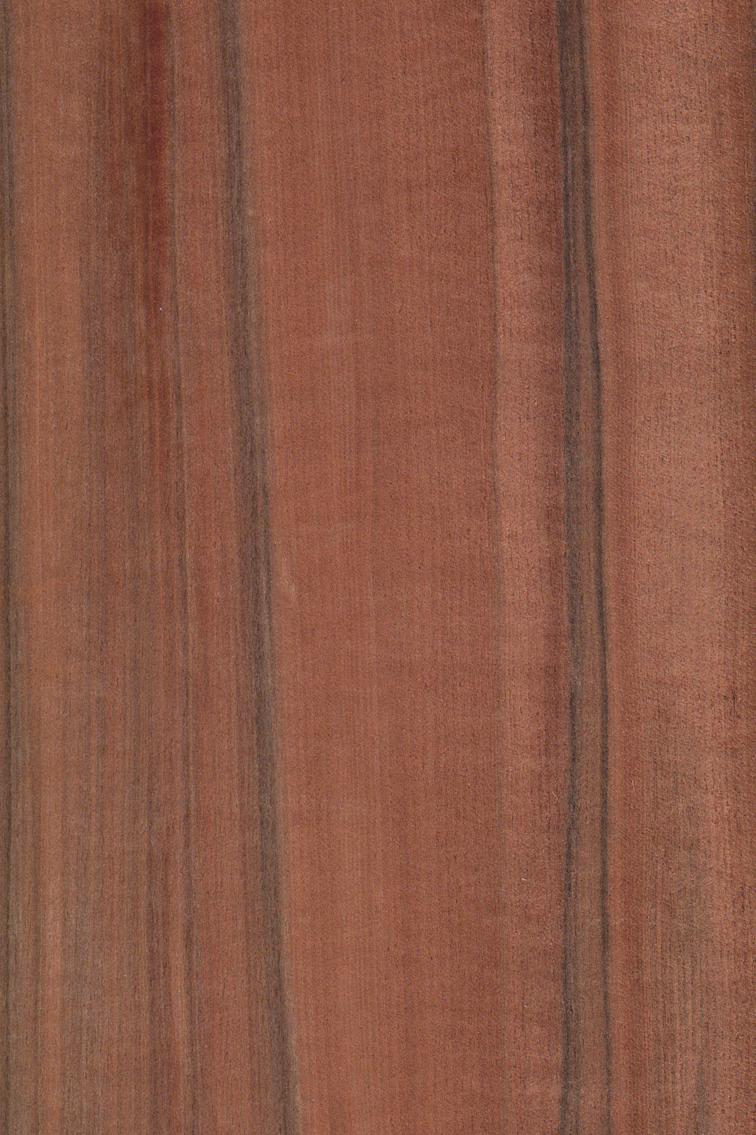 AuBergewohnlich Tineo   Indischer Apfel | Furnier: Holzart, Tineo, Blatt, Dunkel, Rot,  Rötlich, Braun,Exoten, #Holzarten #Furniere #Holz