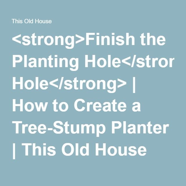 <strong>Finish the Planting Hole</strong> | How to Create a Tree-Stump Planter | This Old House