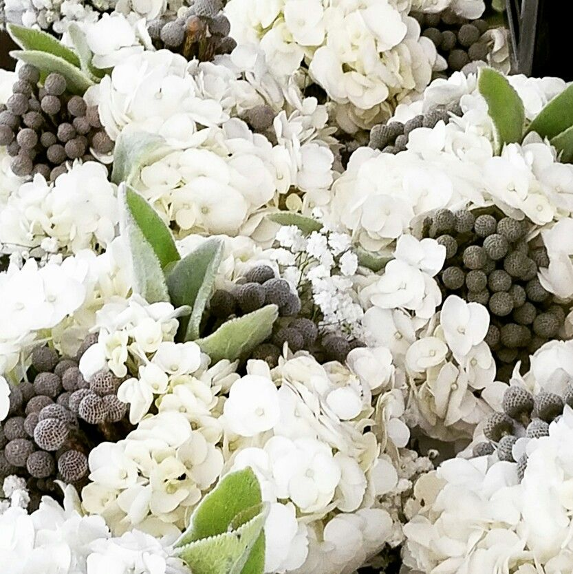 Wedding flowers by Events in Bloom