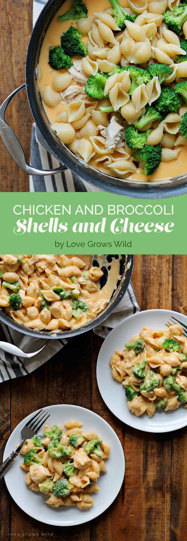 Chicken and Broccoli Shells and Cheese. #fallrecipesdinner