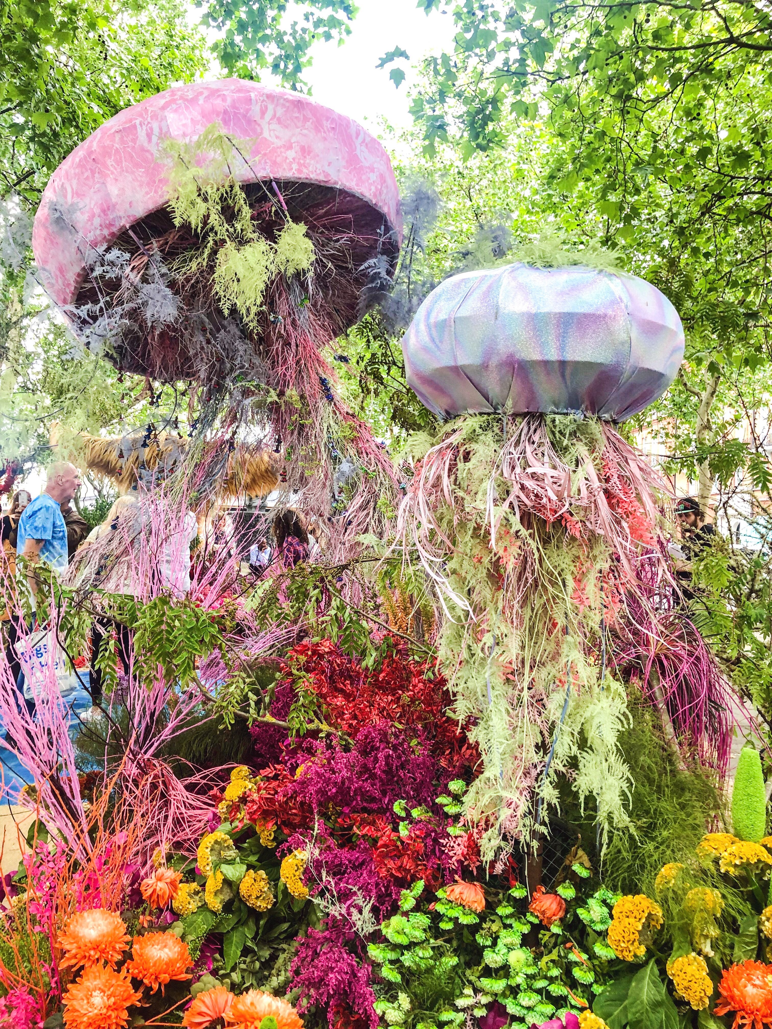Chelsea In Bloom 2019 Bloom, Chelsea flower show