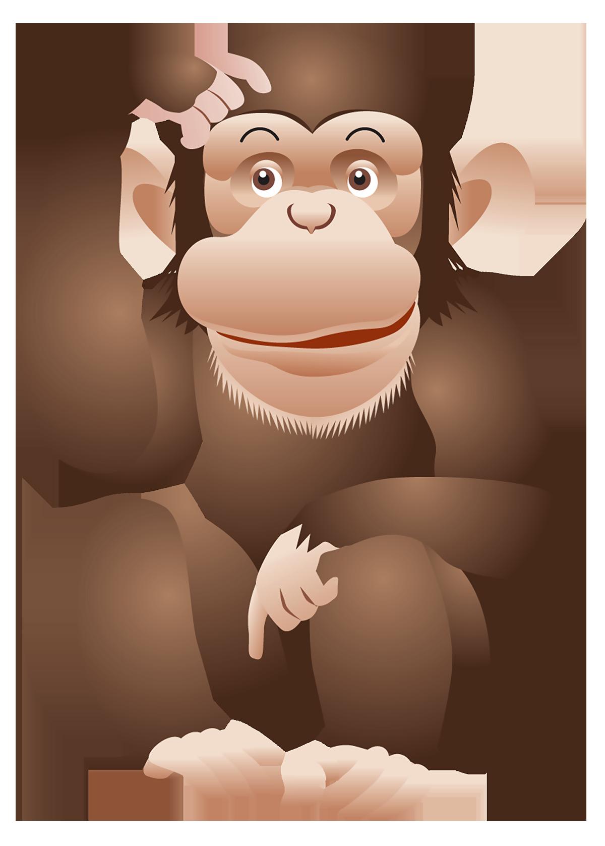 monkey transparent image monkey pinterest monkey and animal