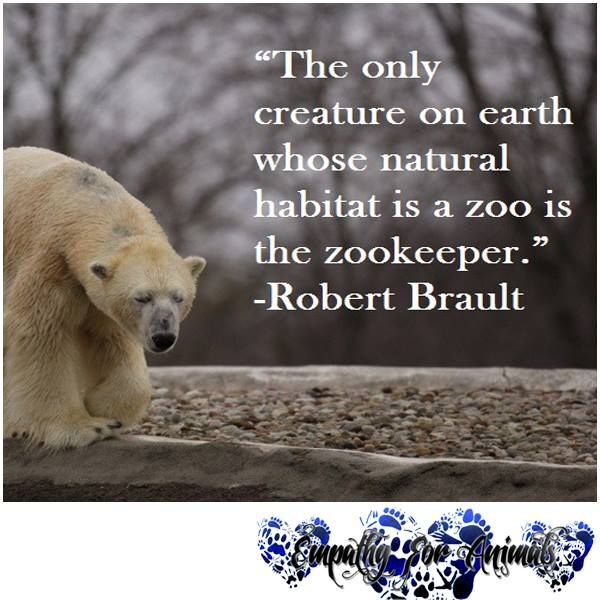 Love Animal Quotes: Please Like Our Page @ Empathy For Animals. Be One With Us