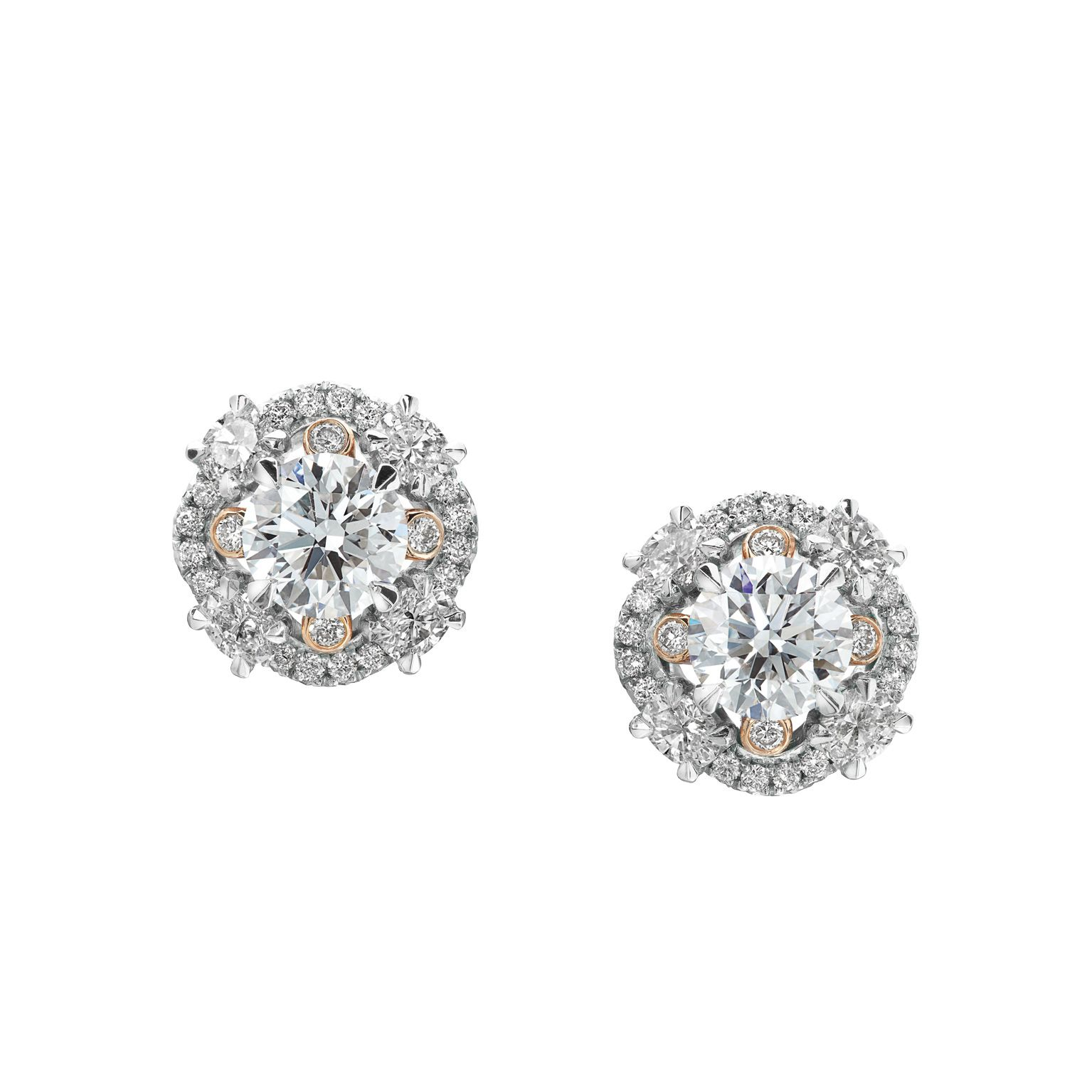 Diamond Cluster Double Halo Stud Earrings in 14K Rose and