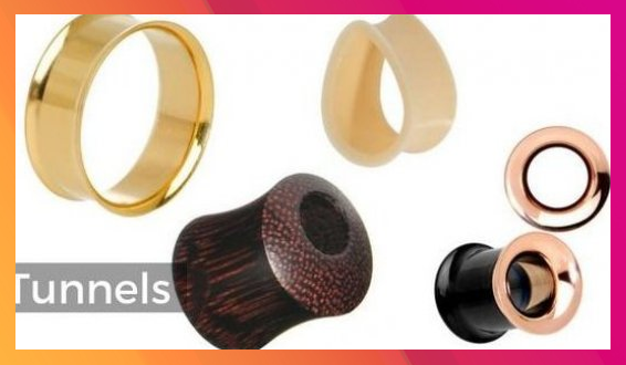 The Types of Tunnel Plugs  BodyCandy