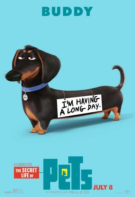 The Secret Life of Pets (2016) 27x40 Movie Poster Pets