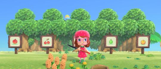 Animal Crossing New Horizons Fruit Tree Design Google Search Fruit Tree Garden Orchard Design Animal Crossing