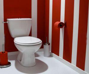 D es decoration wc et toilette couleur peinture papier for Rangement papier wc