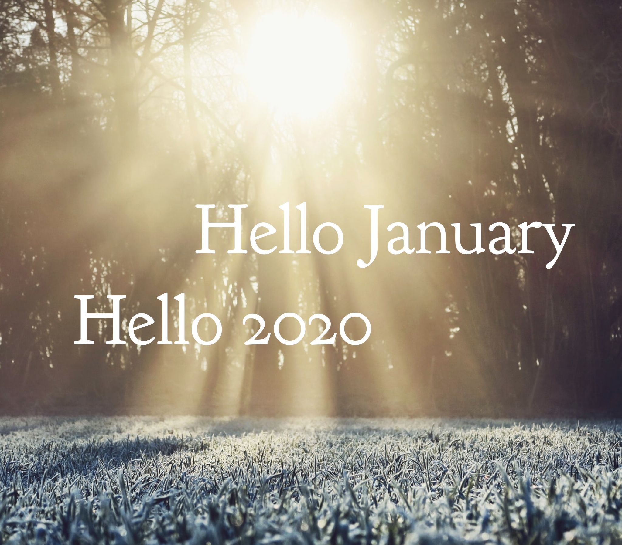 Hello January, hello 2020 Happy new year 🥳 (With images