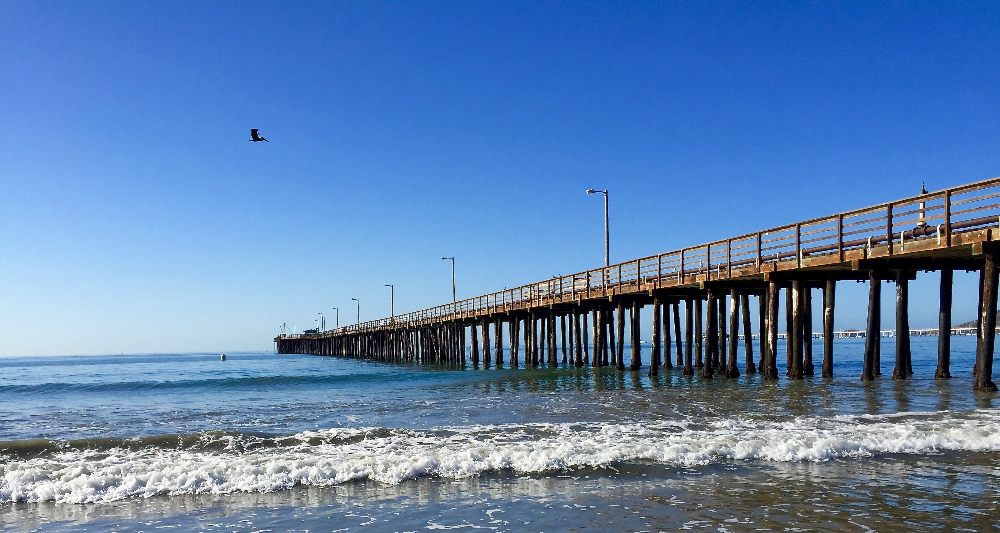 An Avila Beach Picture Postcard Fall Morning