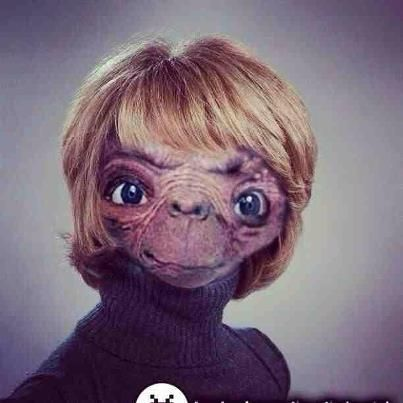 2e5d9d9e584271960cf2f1d7076f3b7f e t gail platt bad hair day pinterest bad hair and funny things