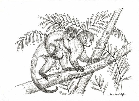 Mother And Baby Monkey Drawing Print On Etsy 15 00 With Images