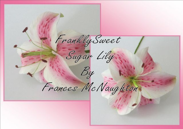 Sugar Flowers by Frances #1: Wired Sugar Lily by Frances McNaughton - by Frances McNaughton @ CakesDecor.com - cake decorating website