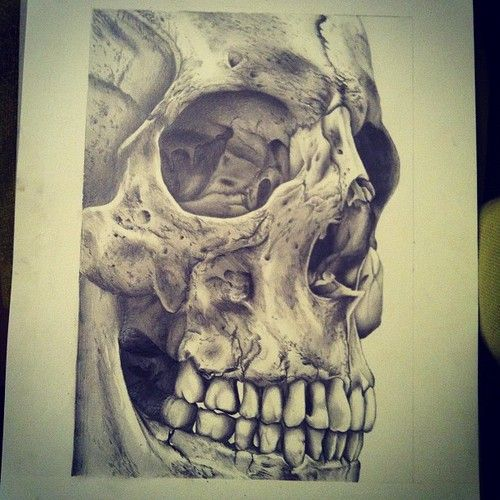 Human Jaw Tattoo: Sketching, Pencil Approx 6 Hours