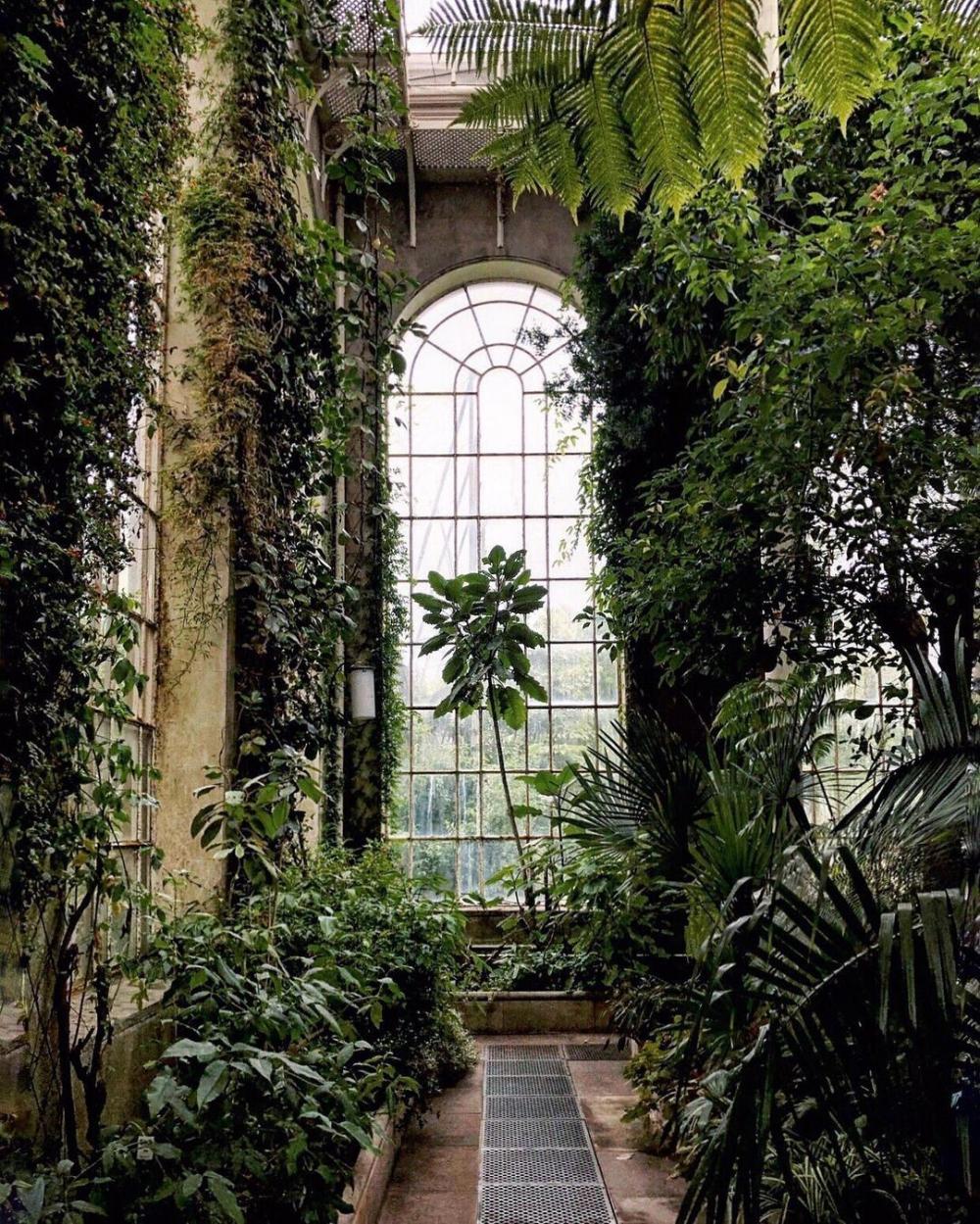2e5eb87bae4c8009791d1c29d692aec4 - Places To Eat Near Botanic Gardens Edinburgh