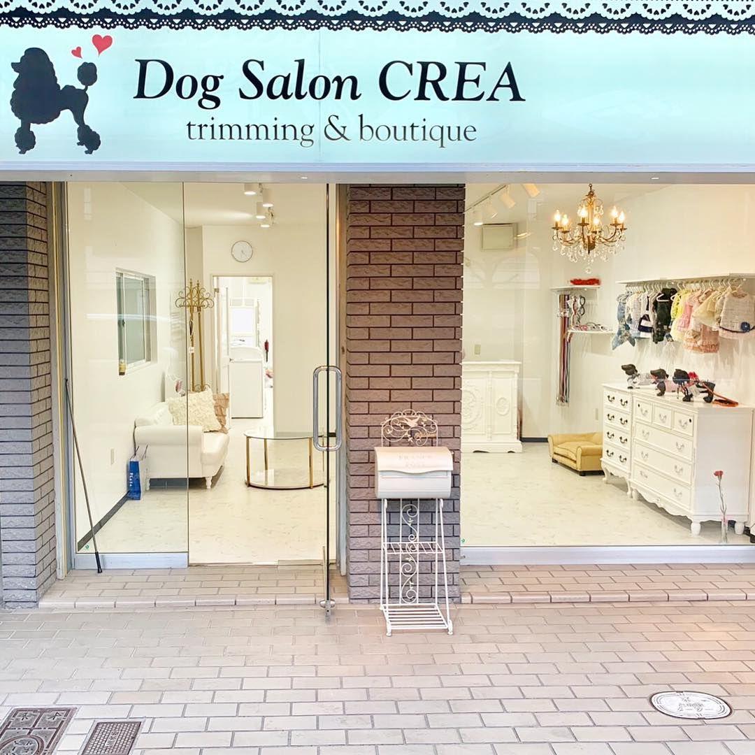 Dog Salon Crea Dog Salon Crea 遂にオープンまで1週間切りました 皆様と可愛いワンちゃんにとって少しでも安心して心地のいい空間を作れる様にがんばります ドッグサロン Dogsalon トリミング Trimming Dog 大阪市 Dog Salon Outdoor Decor Dogs