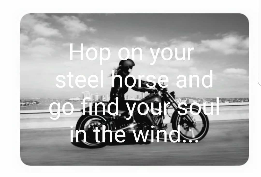 Thanks Dixie Biker Love Riding Quotes Biker Quotes