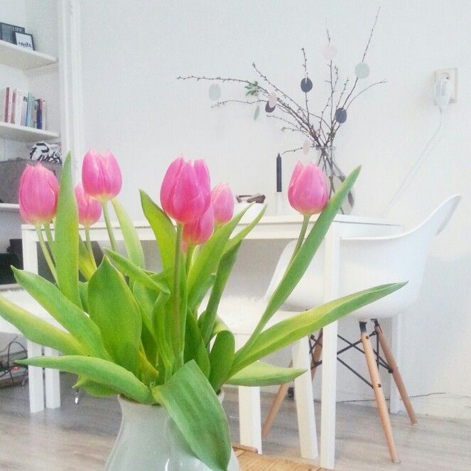 Tullips pink white interior