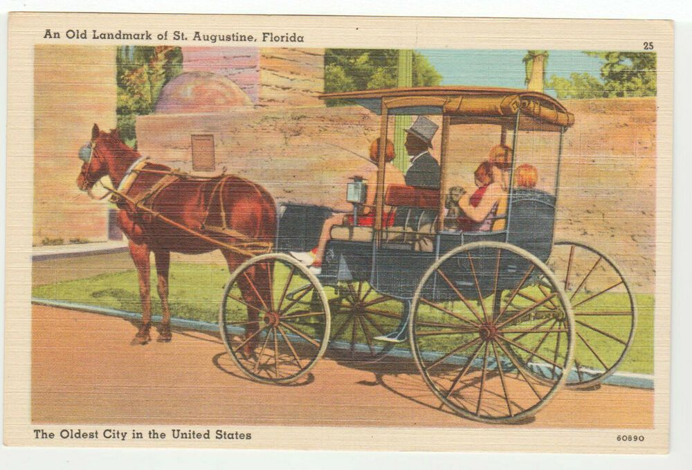 St. Augustine FL Postcard Vintage Horse Carriage Ride