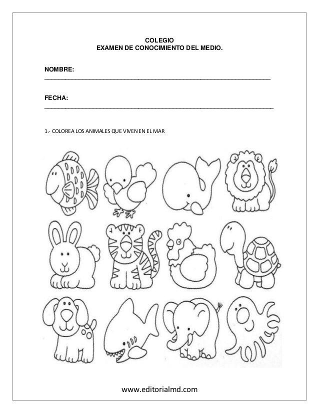 Examen para preescolar   animales del mar   Pinterest   School and ...