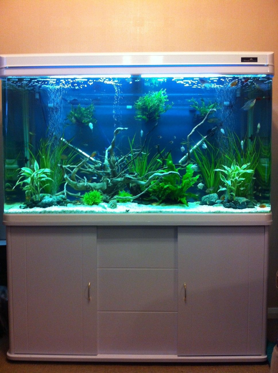 Fish tank tv stand - Old Entertainment Center Into A Fish Tank Stand Ideas Pinterest We The O Jays And Entertaining