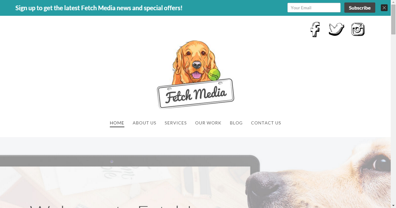 Fetch Media Website design, Media, Social media manager