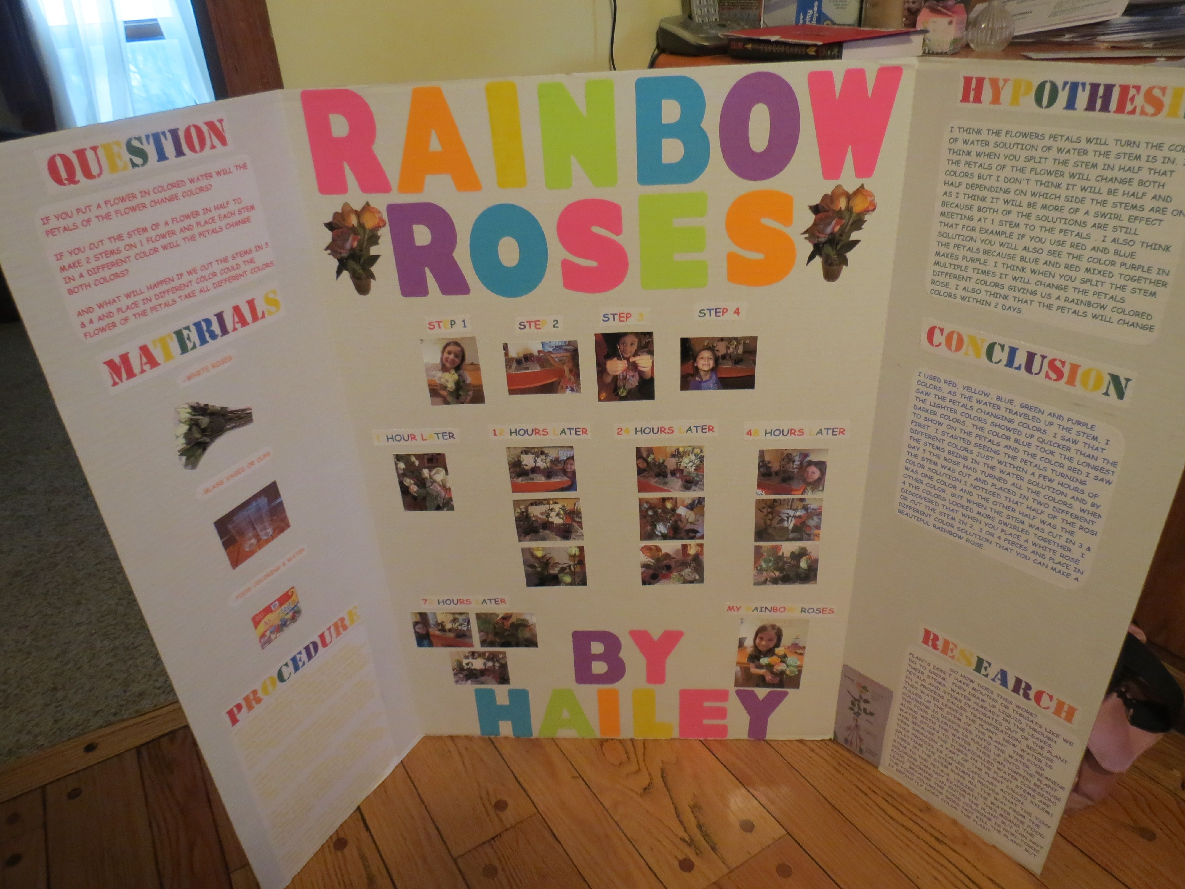 Hailey s Rainbow Rose Project 2013 We took white roses, split the stems in 2,3 & 4, placed them ...