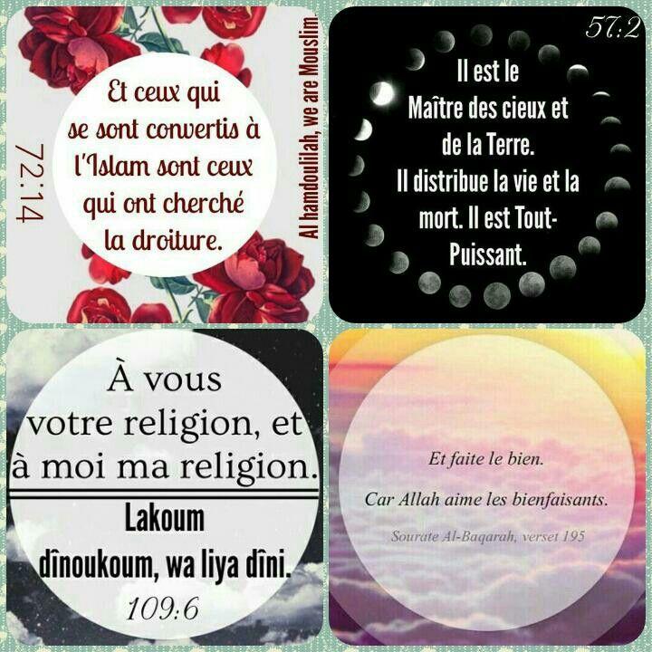 Versets du saint Coran - traduction rapprochée