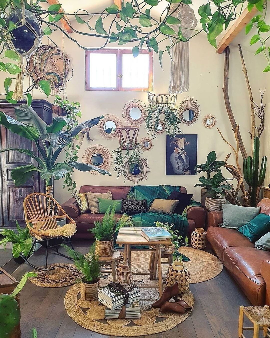 House Plant Community S Instagram Post Grow Plants Save The Earth Urban Jungle Living Room Aesthetic Room Decor Dream Rooms Jungle living room ideas