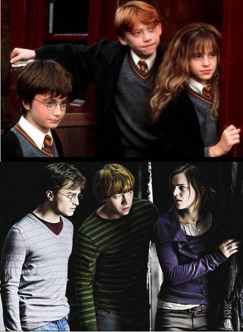 The Golden Trio All Grown Up Always Harry Potter Harry James Potter Harry Potter Love