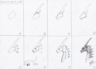 Comment dessiner des dragons dragon dragon fairy tales et sketches - Dessin un dragon ...