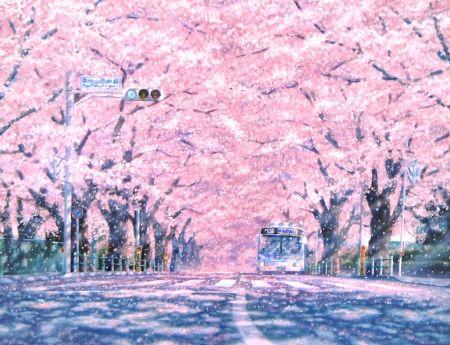 Sakura Street Desktop Nexus Wallpapers Pemandangan Khayalan