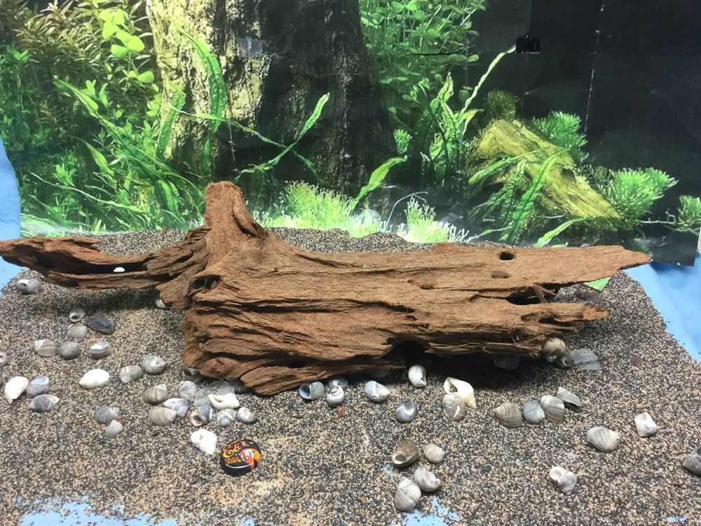 2e631bcdca26936fa7e8cff4013e680a - How To Get Driftwood To Sink In Fish Tank