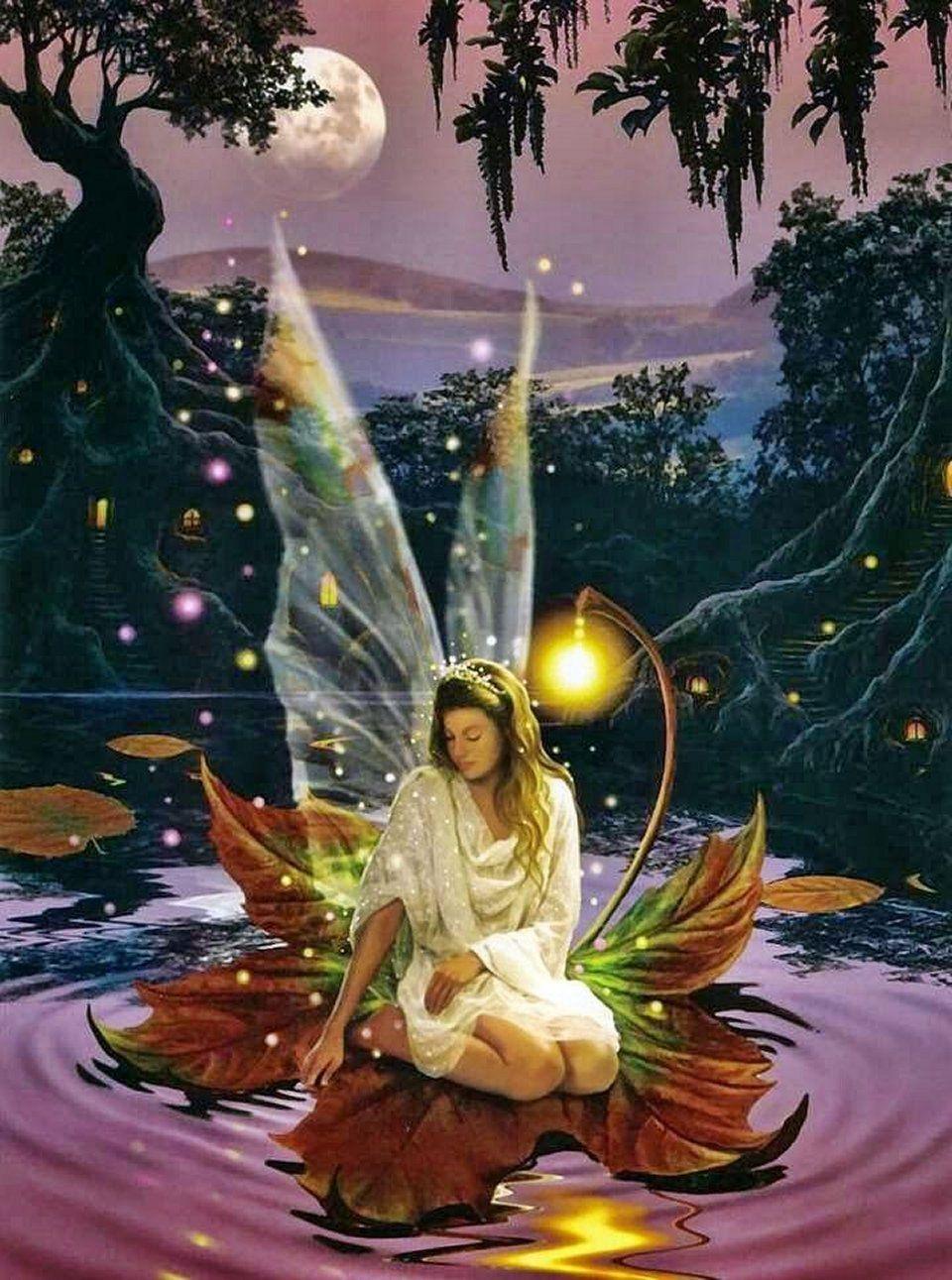 elfen und feen  schöne feen bilder engel und feen
