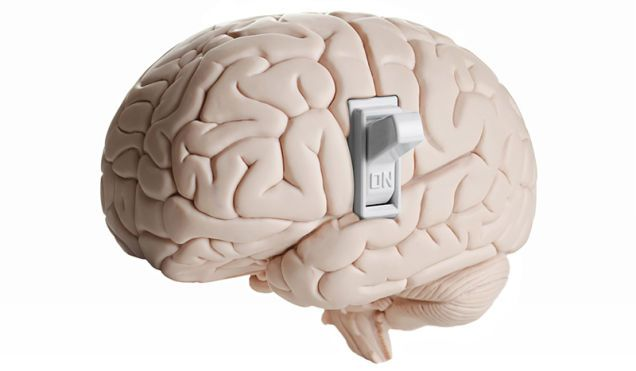 """Científicos localizan el """"interruptor"""" de la consciencia en el cerebro"""