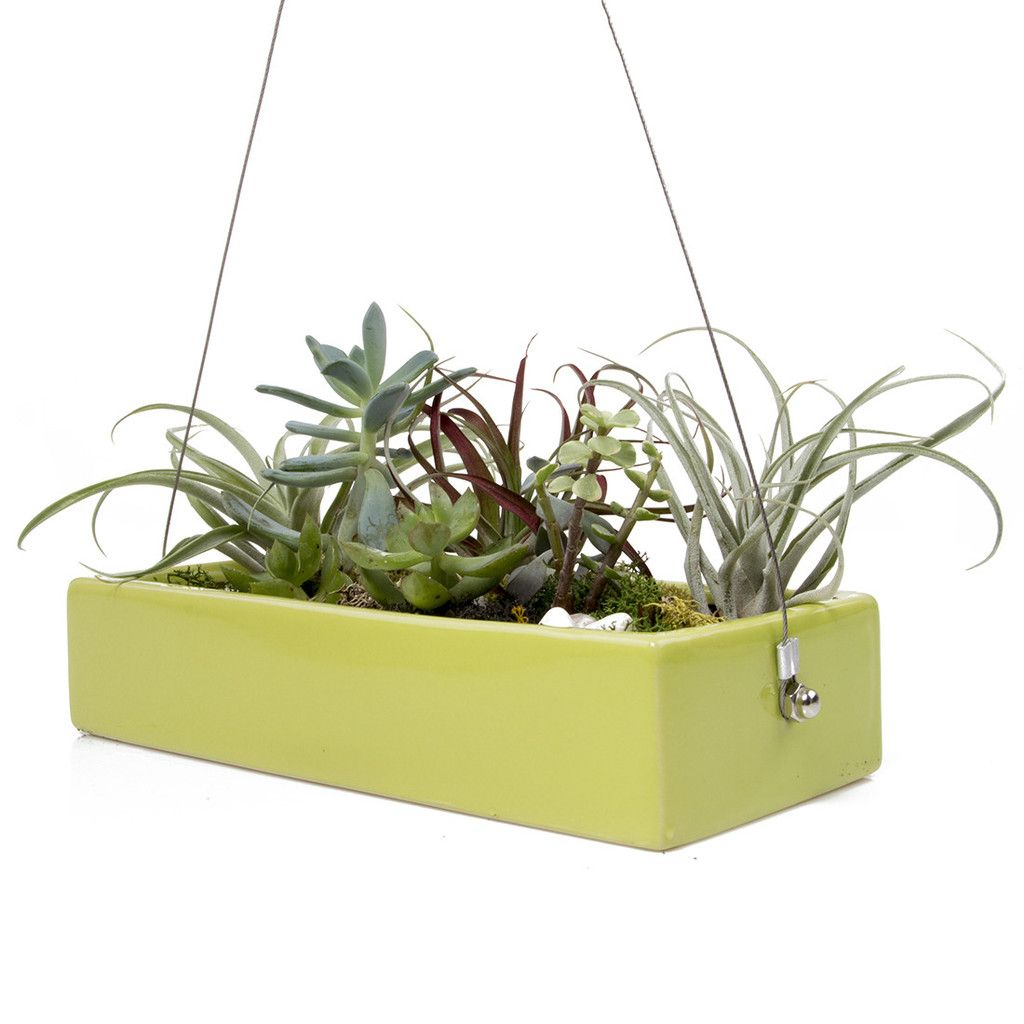 Chive, Ragna Ceramic Hanging Planter   Charteuse Images