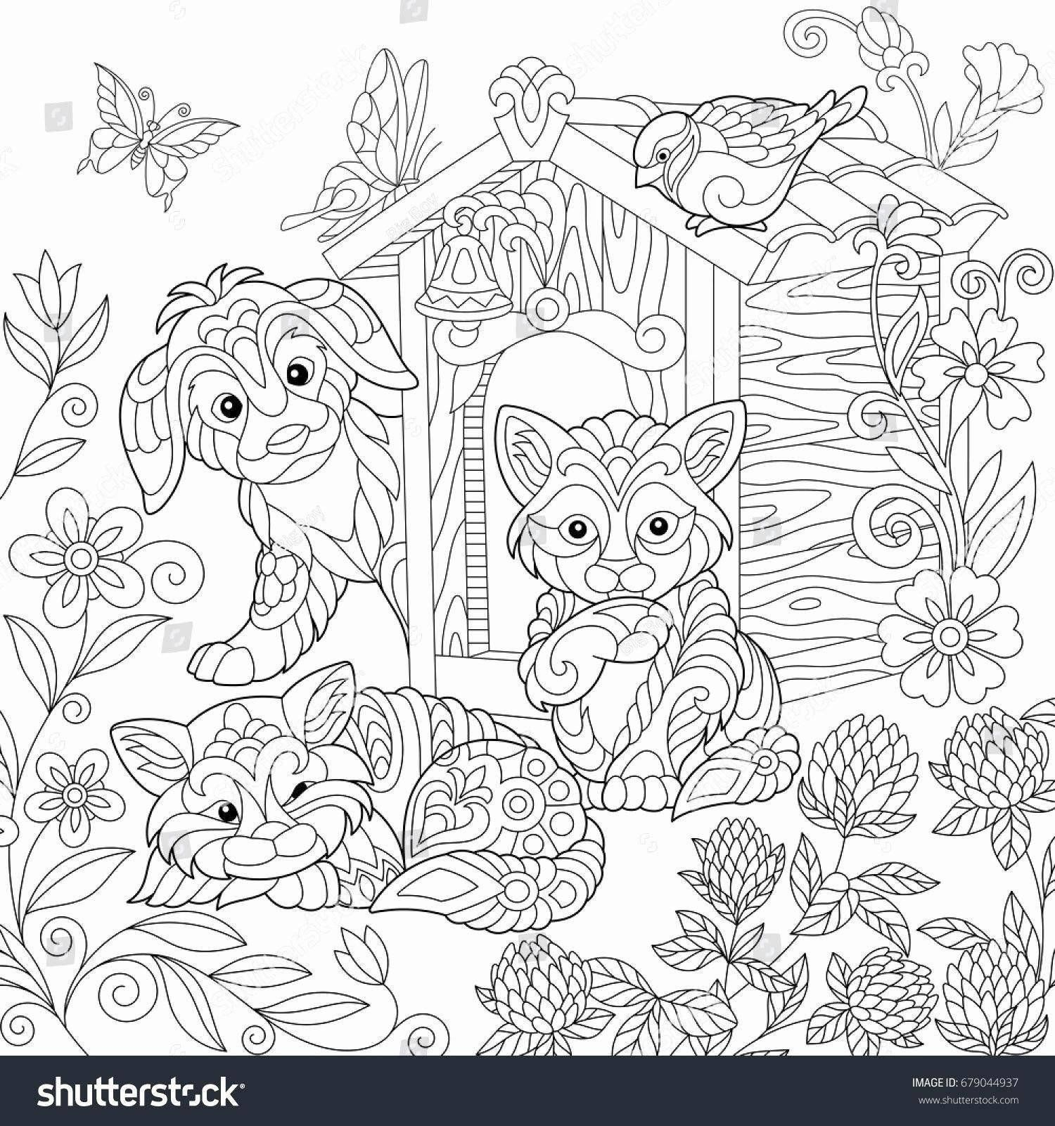 Pete The Cat Coloring Page Luxury Warrior Cats Coloring