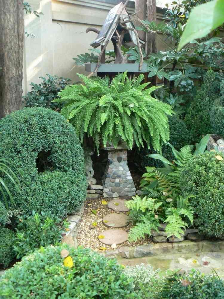 immergrüne pflanzen, farne und dekorative elemente aus gestein im, Gartenbeit