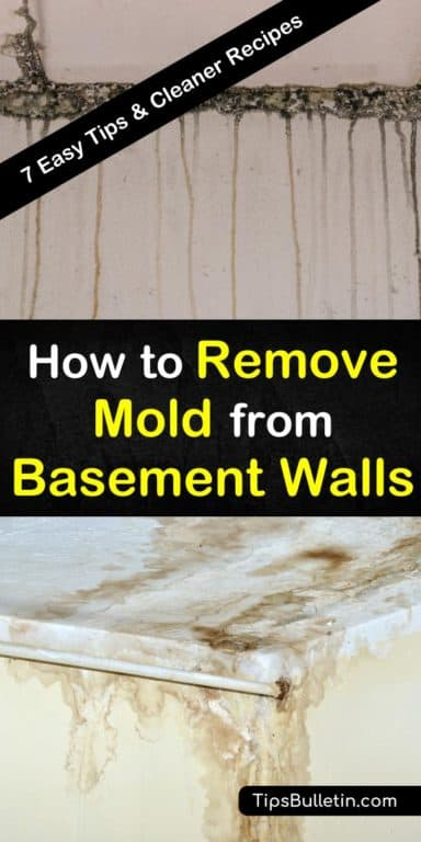 7 Quick Ways To Remove Mold From Basement Walls Mold Remover Basement Walls Cleaning Mold