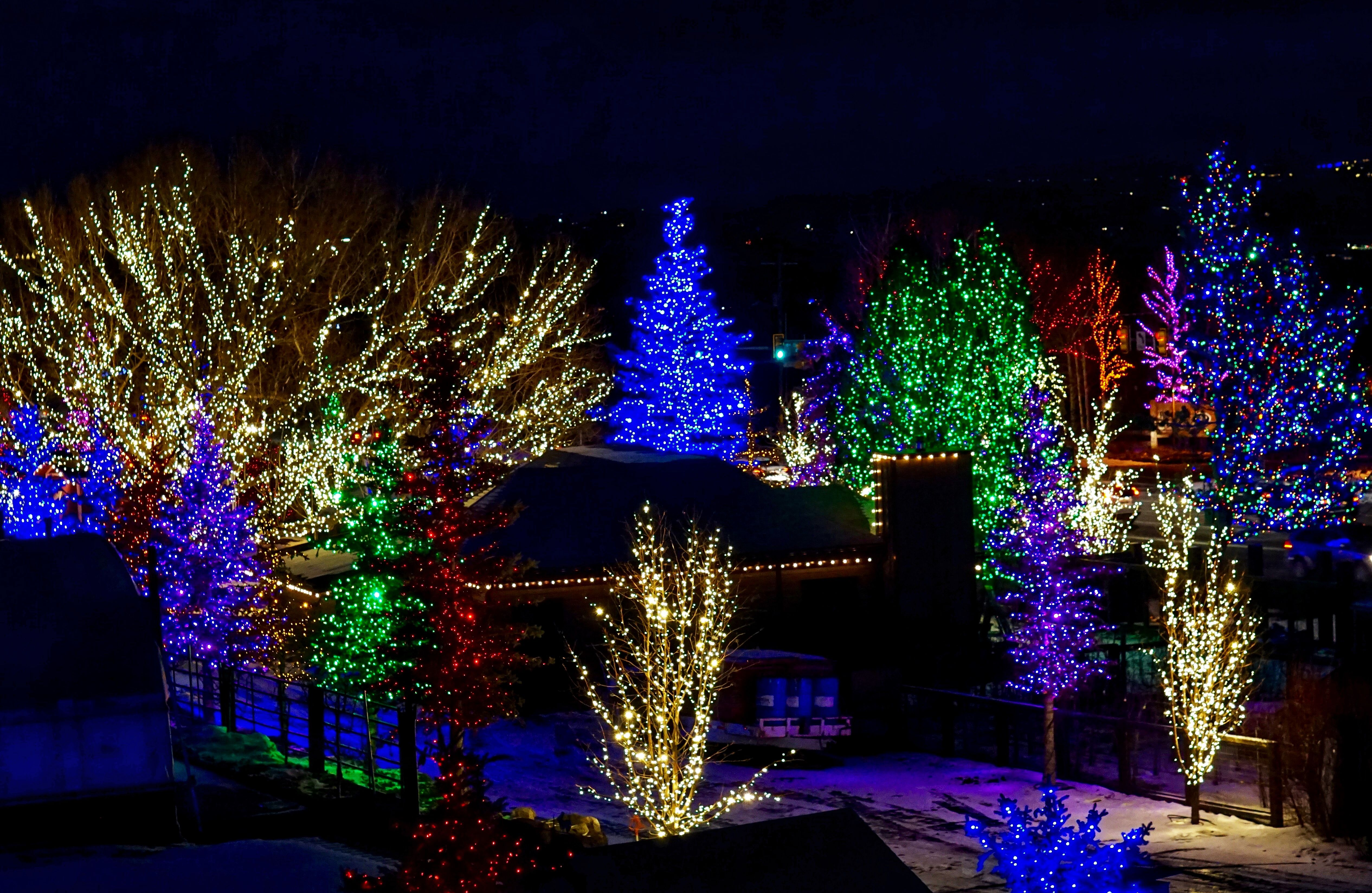 Love This Tree Farm In Park City Utah Christmas Scenery Tree Farms Park City