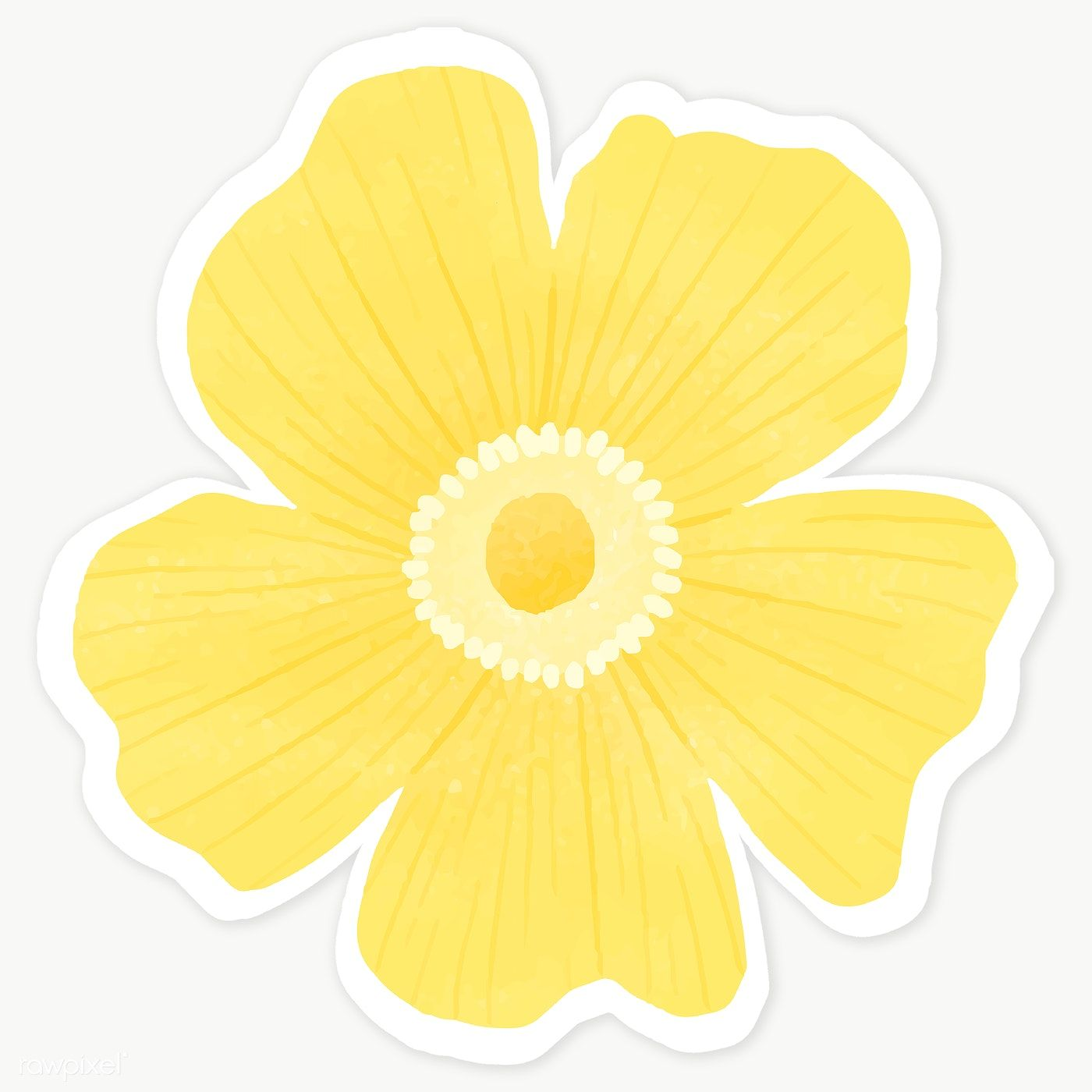 Download Premium Illustration Of Yellow Flower Sticker Transparent