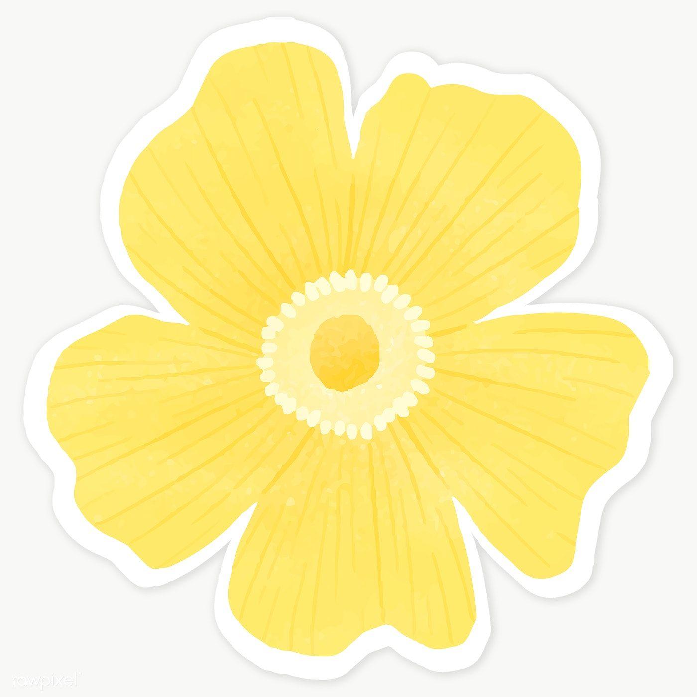 Yellow Flower Sticker Transparent Png Premium Image By Rawpixel Com Katie Moir Warna Bunga Stiker
