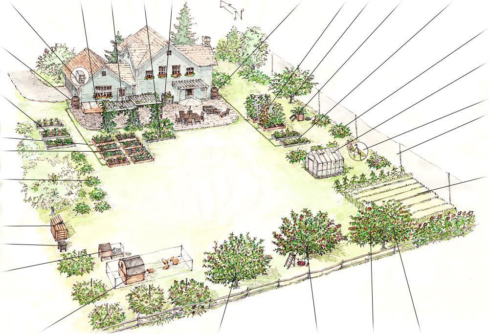Family Backyard Landscaping Plan | resource to ensure that ...