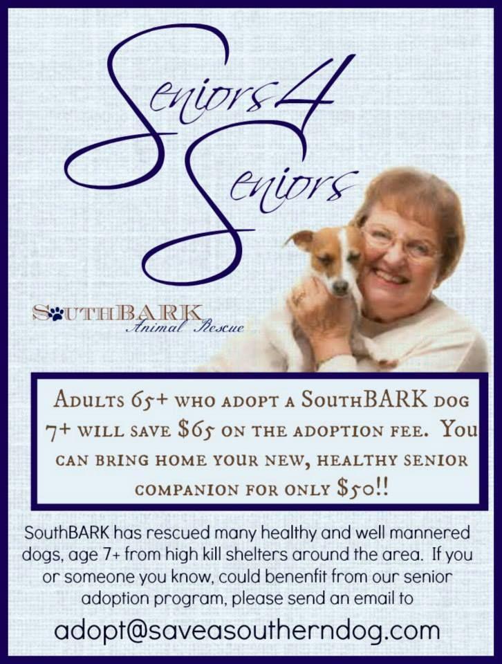 Seniors 4 Seniors #adopt #rescue #dog