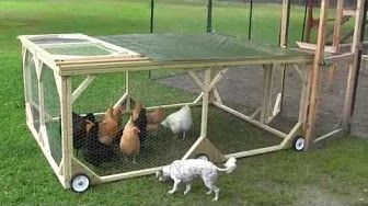 The Best Chicken Tractor Youtube Chicken Diy Chicken Tractor Chicken Tractors