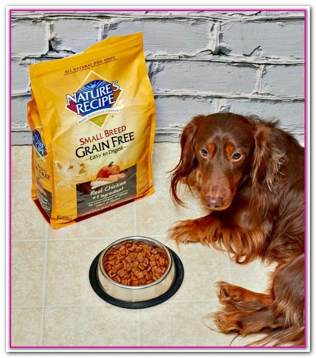 Best Dog Food At Walmart Reddit Dog Food Recipes Best Dog Food