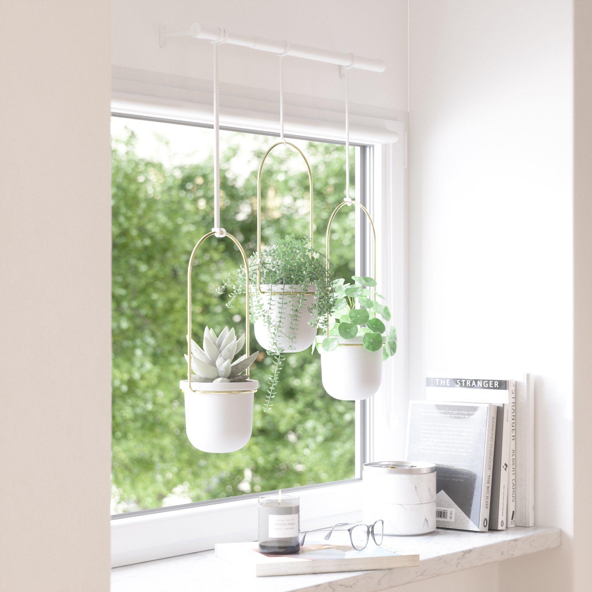 Umbra Triflora Hanging Planter in 2020