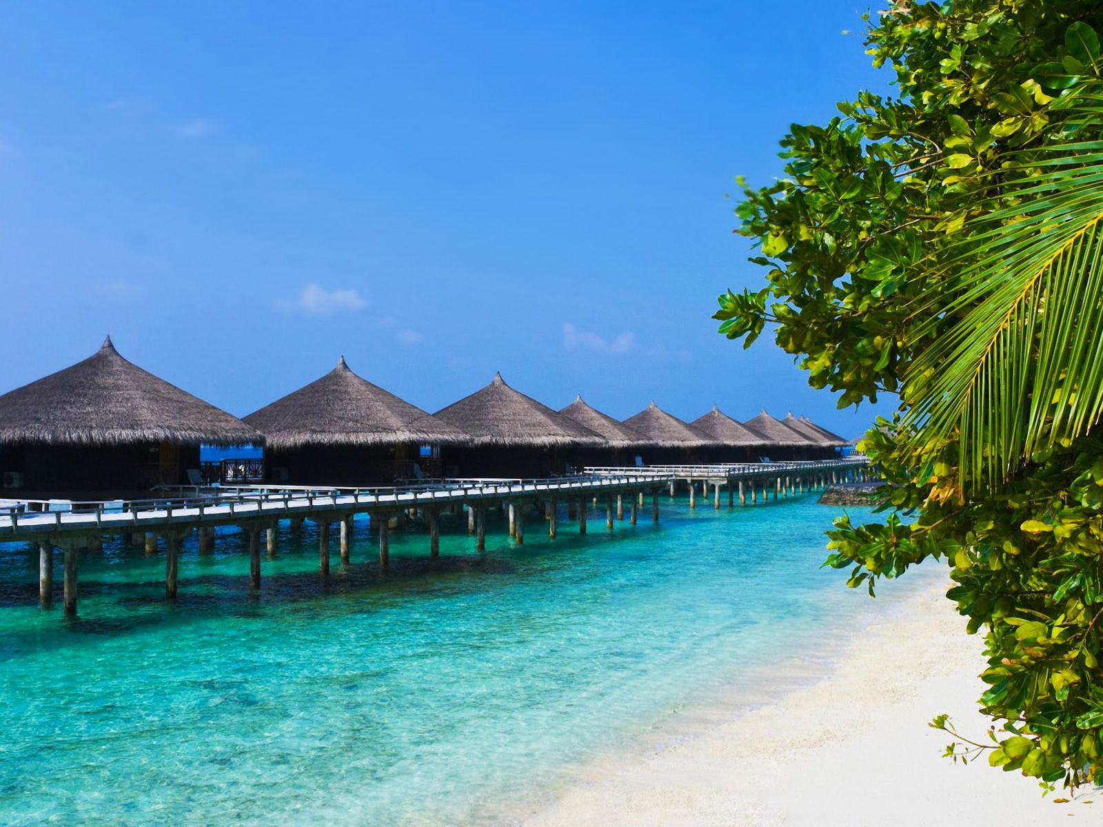 tropical places | tropical places houses beach backgrounds wallpaper