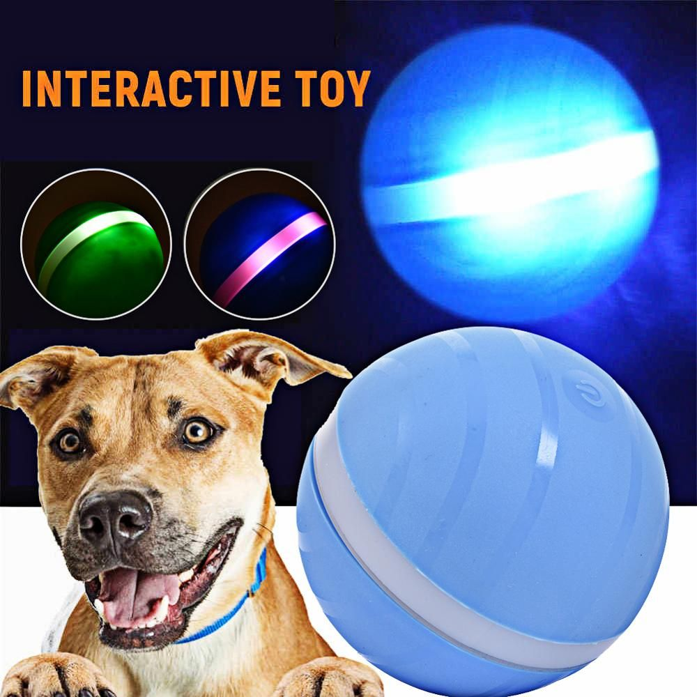 Cheap dog toys buy directly from china suppliers